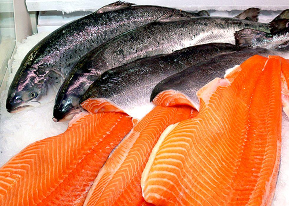 Major U.S. Supermarkets to Boycott GE Salmon