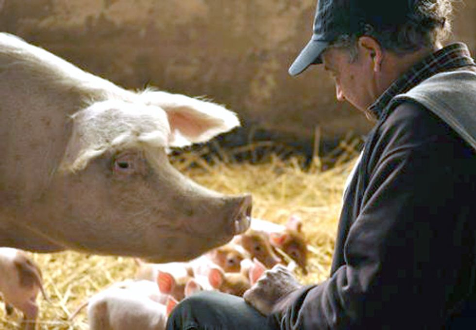 Growing Green Awards: Fifth-Generation Farmer Shares His Success Raising Pigs Sustainably and Antibiotic-Free