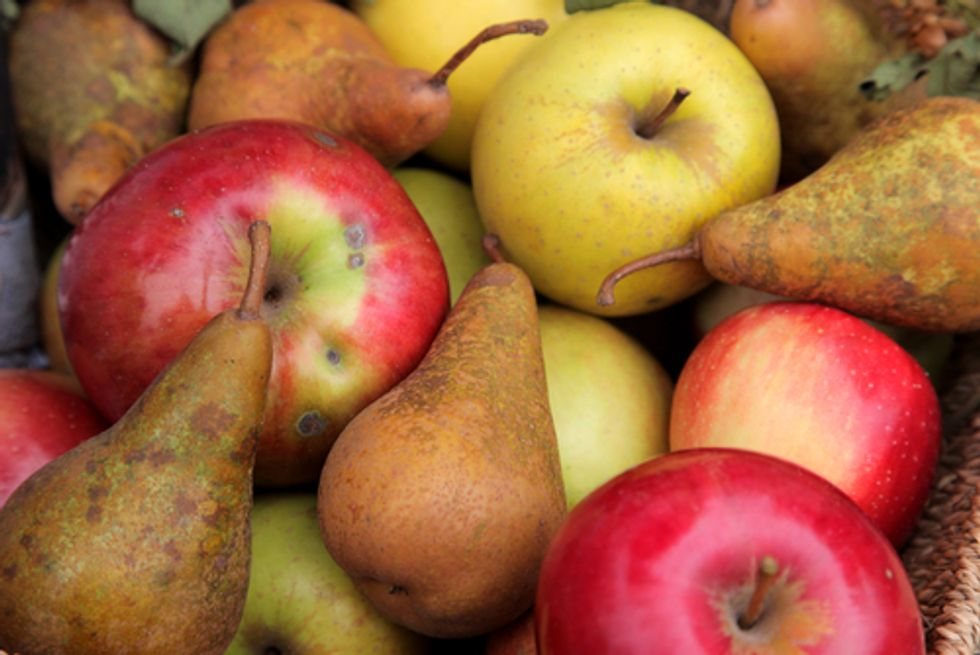 Antibiotic in Organic Pears and Apples? No, Says Organic Board