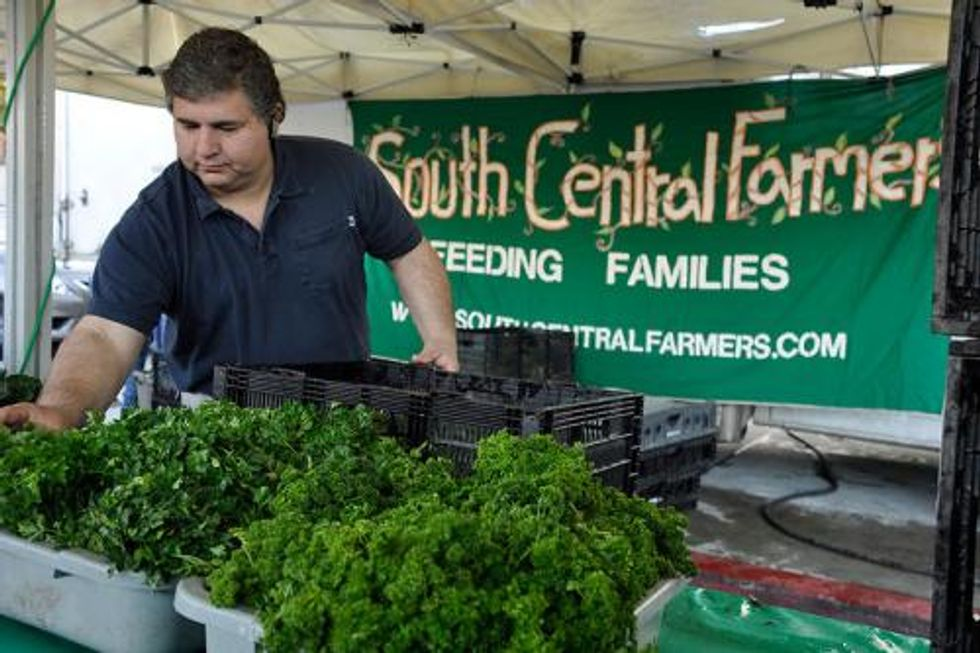 Growing Green Awards: Renewing Equity and Opportunity in the Local Food System