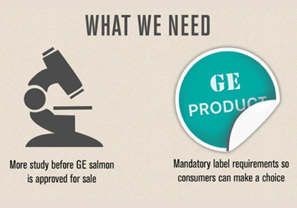 Nearly 2 Million Tell FDA: Deny GE Salmon