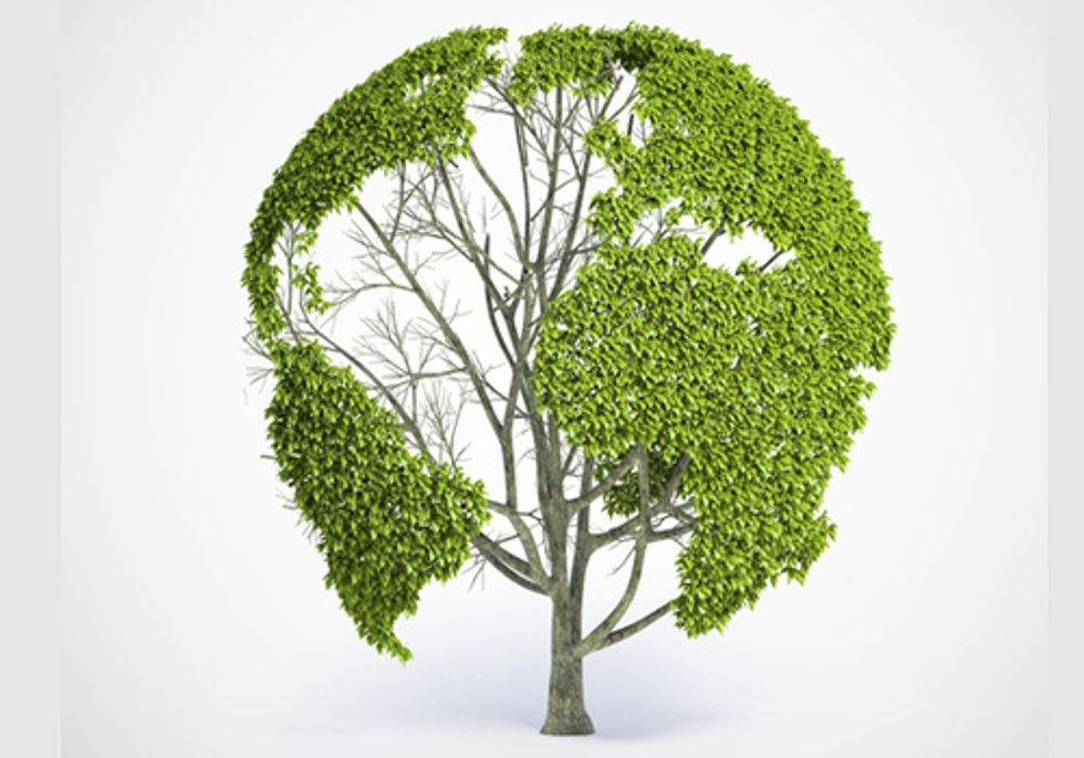 Redefining Progress: How Well-Being and Happiness Depend on a Healthy Environment
