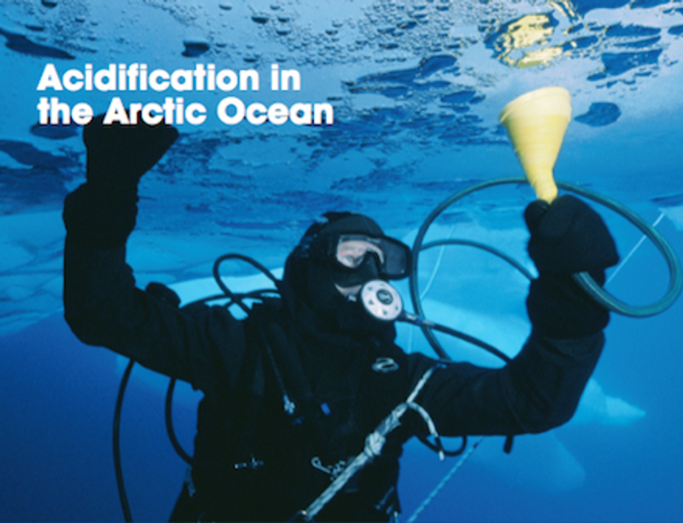Scientists Warn of Emerging Impacts from Arctic Ocean Acidification