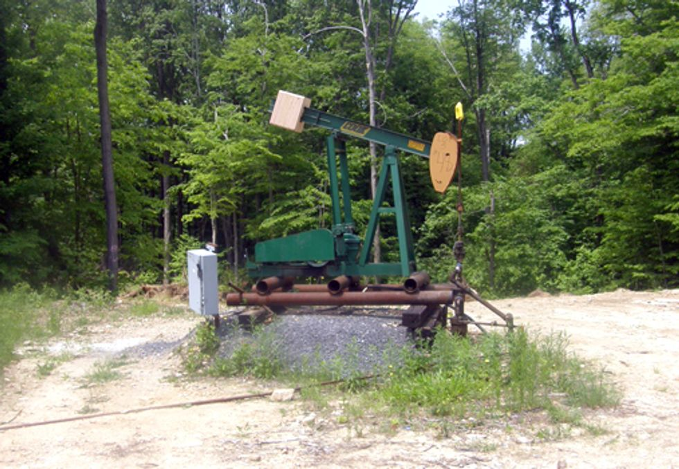 Oil and Gas Drillers Take on Forest Service in Court Battle to Frack Allegheny National Forest
