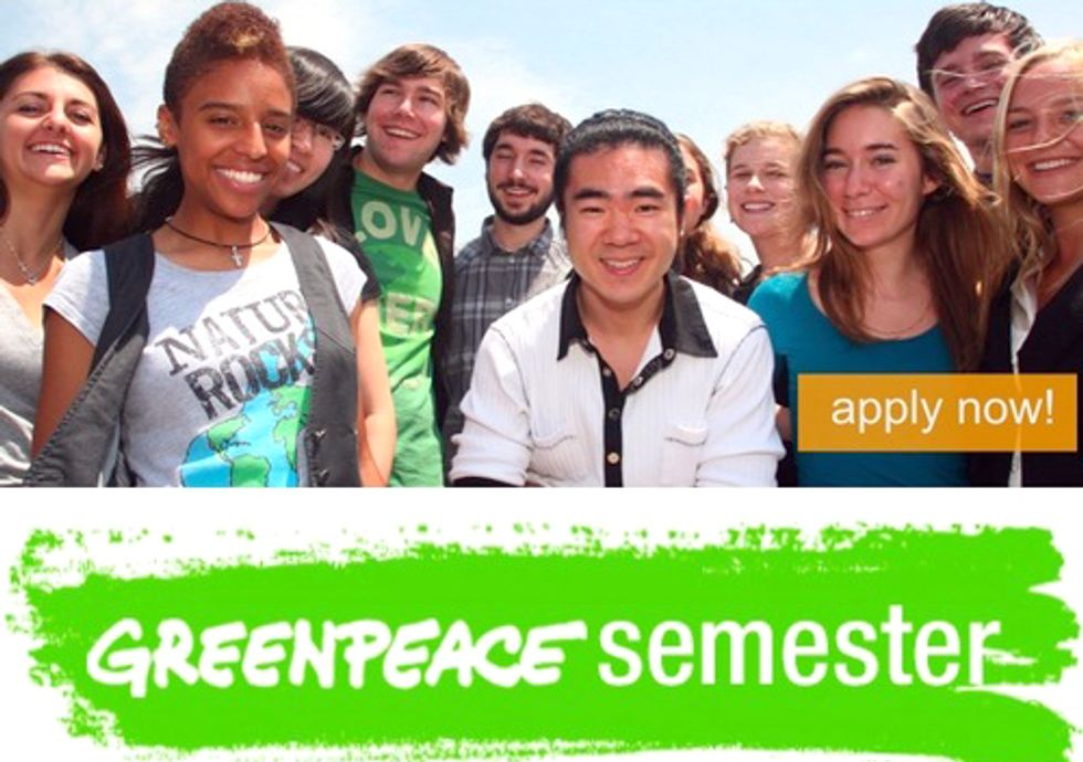 Students: Apply for Greenpeace Semester and Work with Environmental Leaders on the Latest Issues