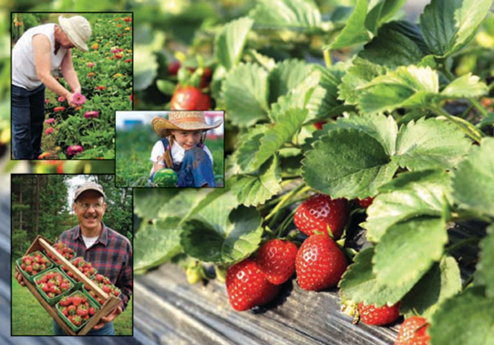Free Public Tours Feature Ohio's Organic and Sustainable Farms and Businesses