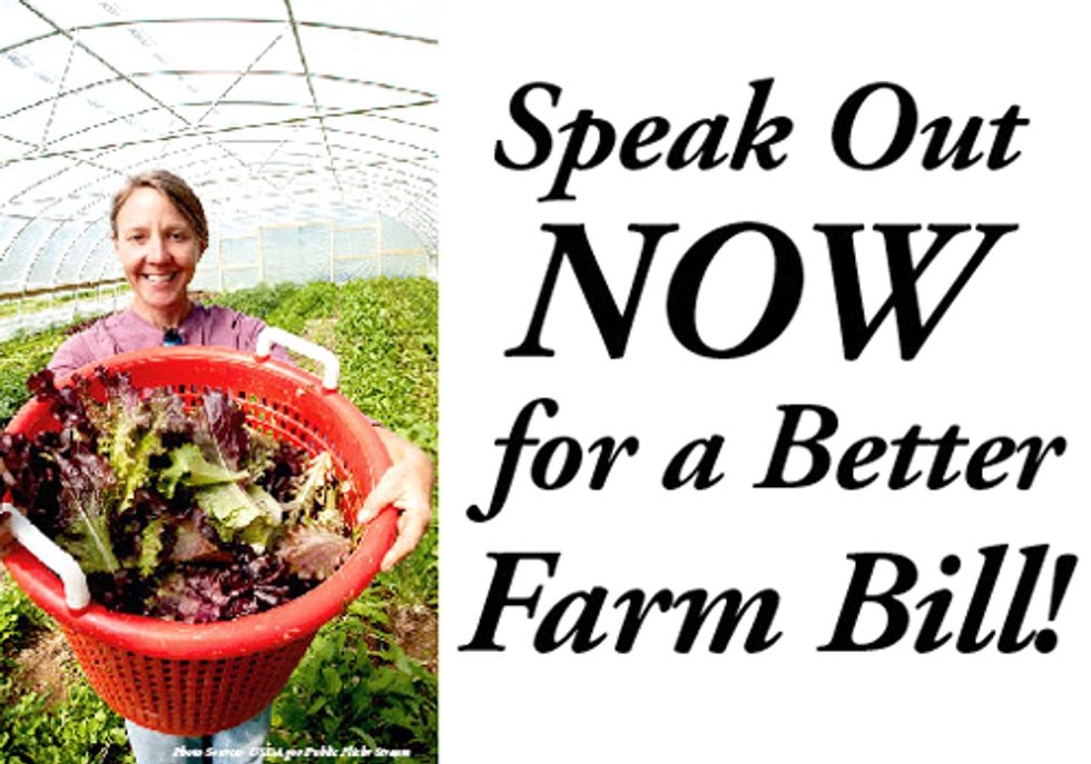 Speak out Today for Farm Bill Conservation Programs