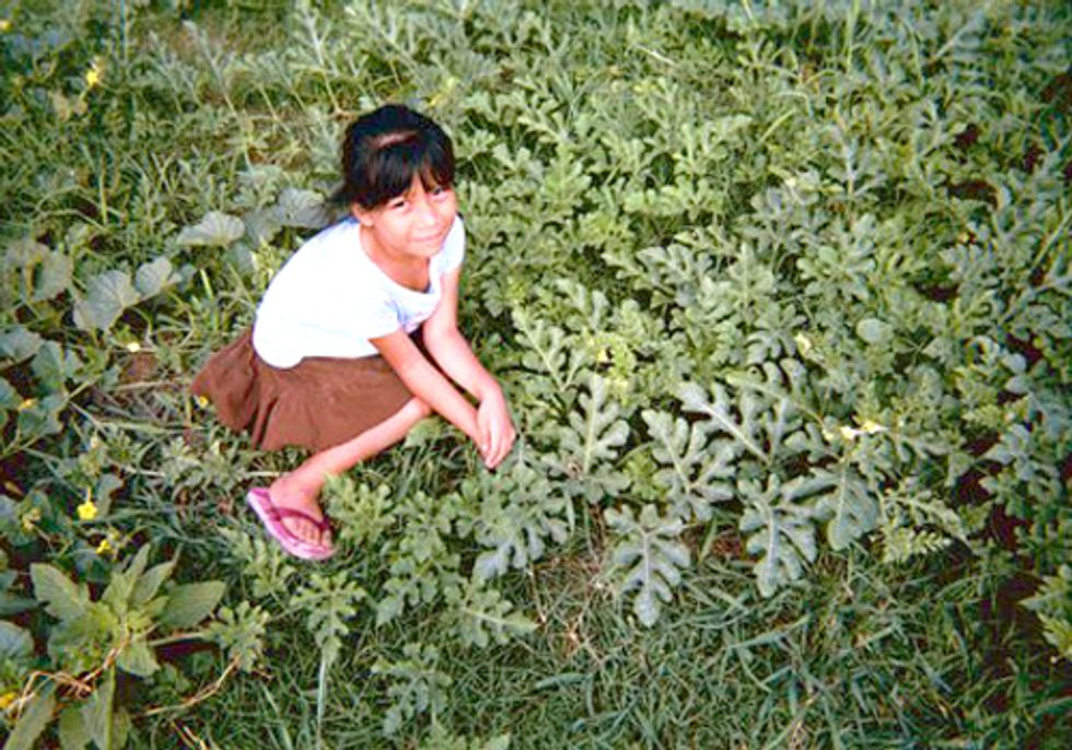 EPA Restricts Pesticide Linked to Learning Disabilities in Children
