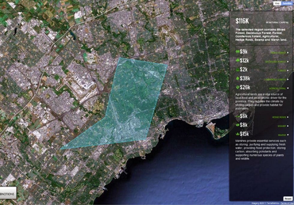 Google Earth Helps Solve the Nature Equation