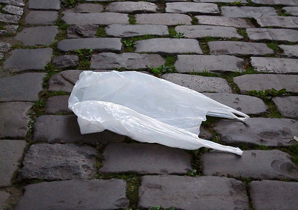 Are Plastic Bags Really Necessary?