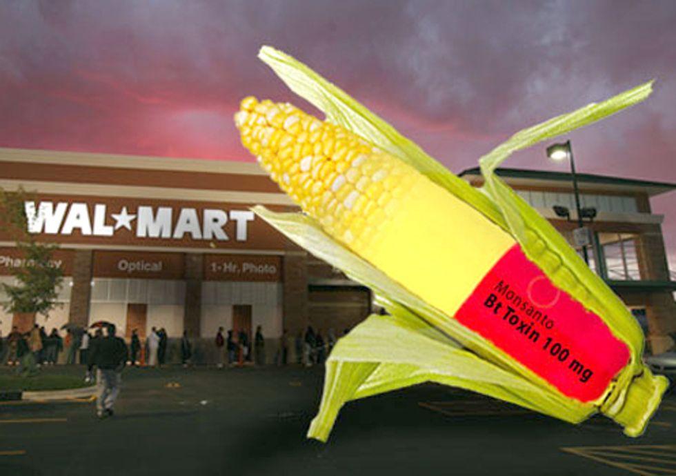 Monsanto GE Sweet Corn to Hit Walmart Shelves