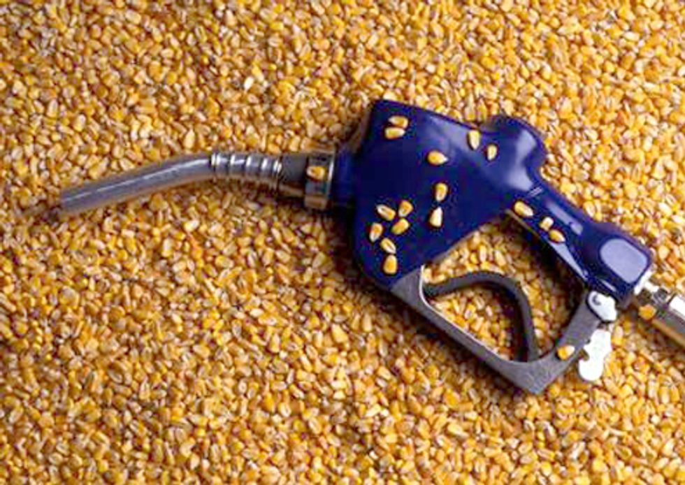 Debate Between Food vs. Fuel Heats Up—UN Pressures Obama to Immediately Suspend Corn Ethanol Mandate