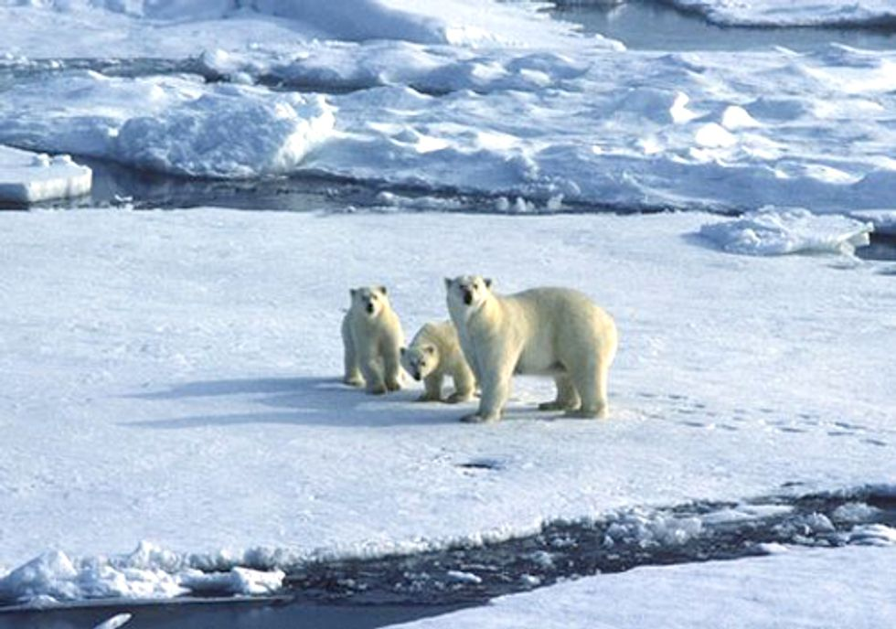 Climate Change Deniers Are Almost Extinct
