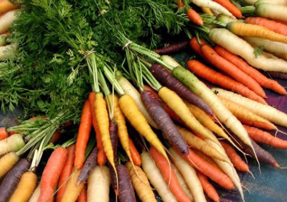 Organic Produce Reduces Exposure to Pesticides, Research Confirms