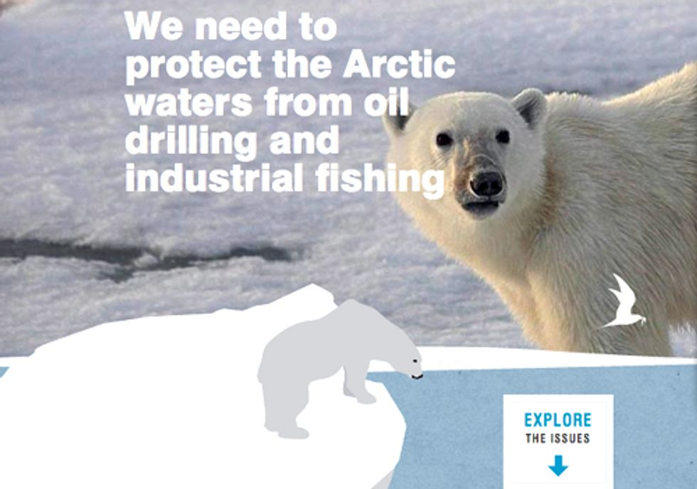 Report Calls for Permanent Halt on Drilling in the Arctic