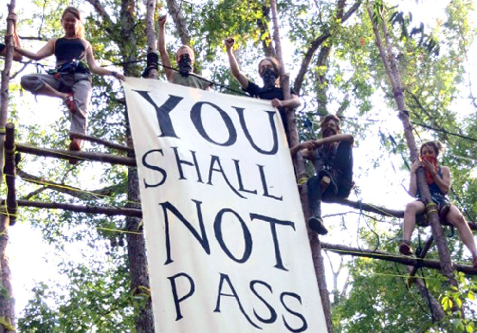 BREAKING: Eight Blockaders Start Indefinite Tree Sit to Stop Keystone XL Pipeline Construction