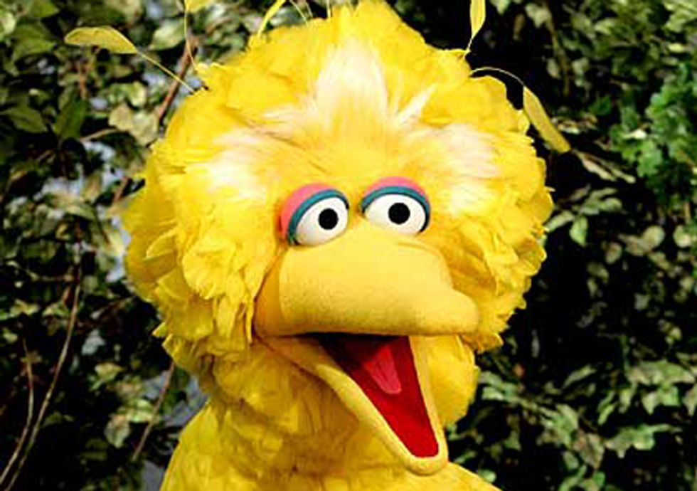 Looks Like Big Bird and Climate Change Have Been Abandoned