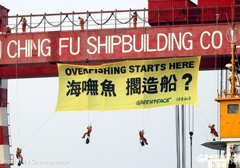 Overfishing Starts Here