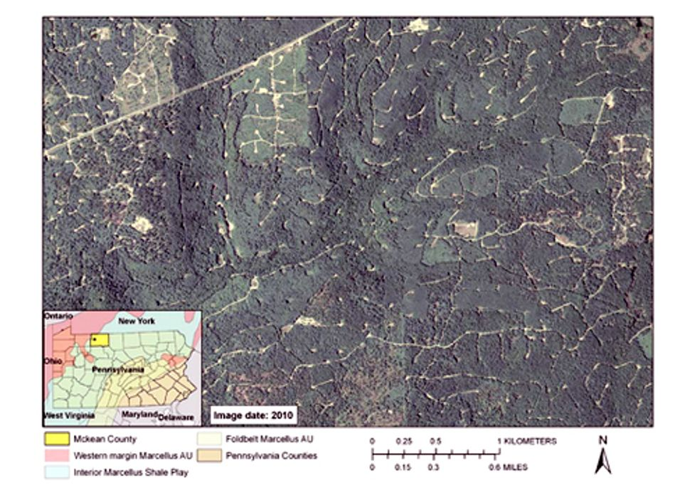 Report Details How Natural Gas Extraction Destroys Forests in PA