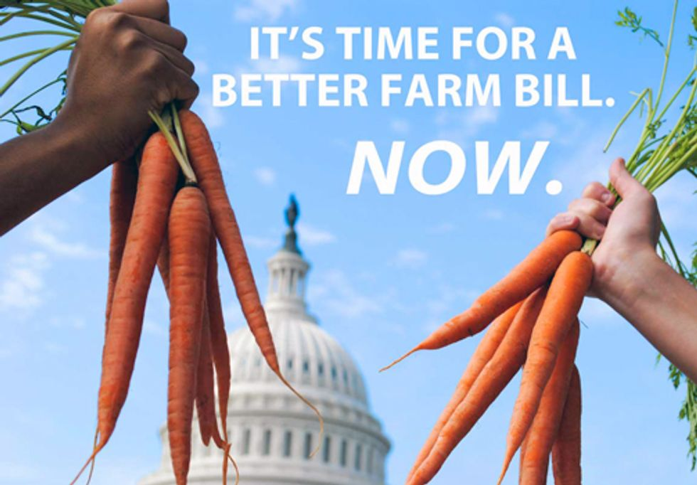 Overripe Farm Bill Needs Priority in Congress During Lame Duck Session