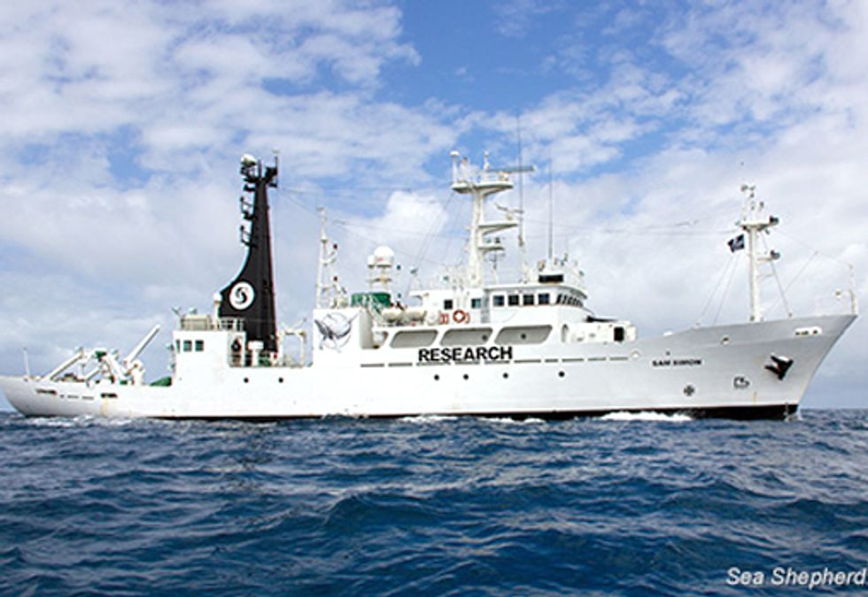 Operation Zero Tolerance Departs for Antarctic to Shut Down Illegal Whaling
