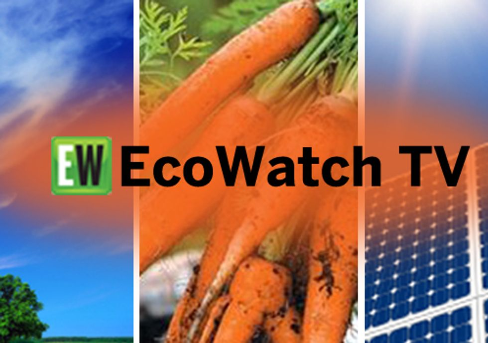 EcoWatch TV Featuring New Fracking Documentary + Filmmakers Joshua Pribanic and Melissa Troutman