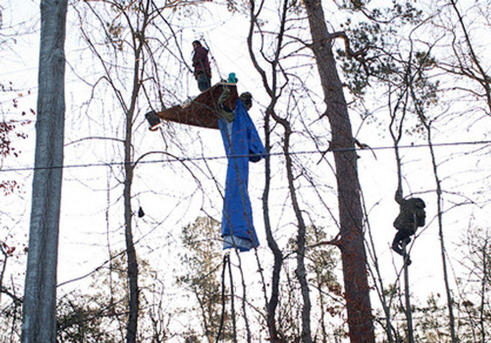 New Tree Blockade Halts Construction of the Keystone XL Pipeline