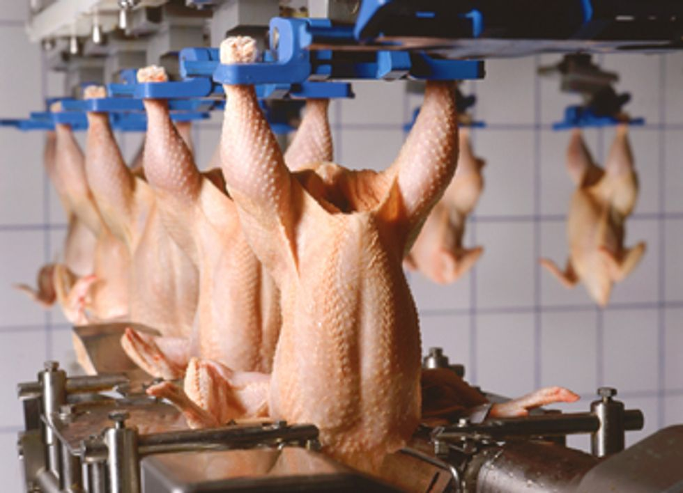 Salmonella Outbreaks Could Worsen with Decreased Poultry Inspections