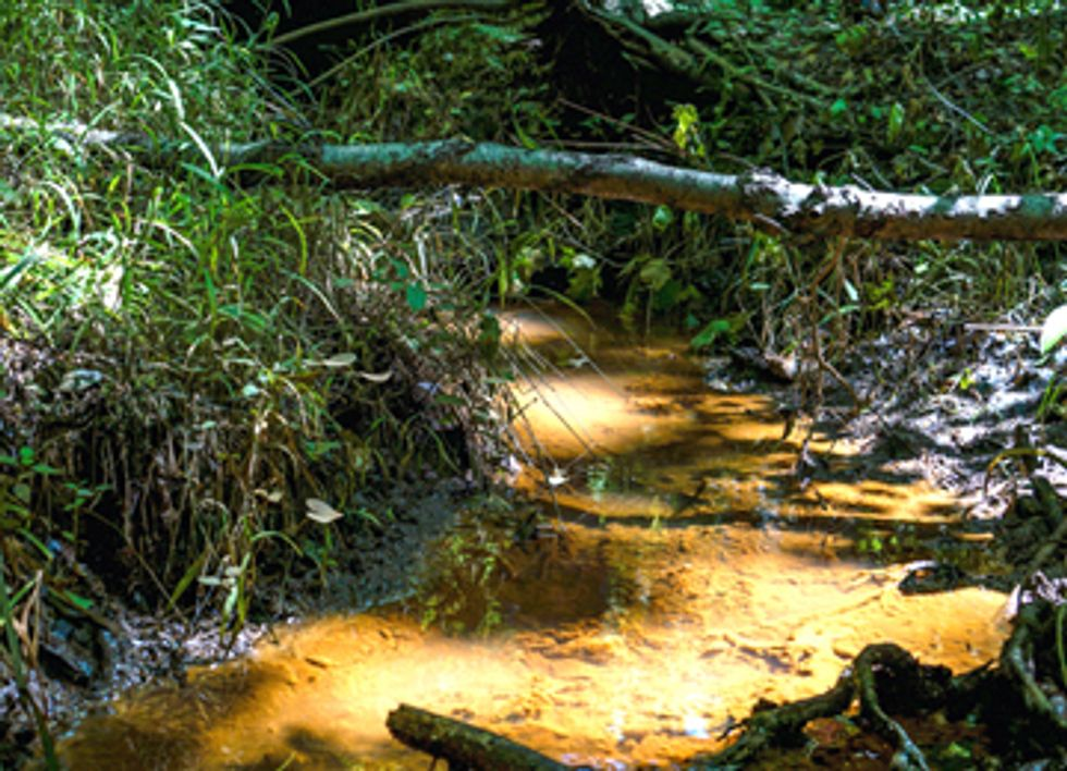 Will EPA Protect Our Families From Toxic Coal Water Pollution?