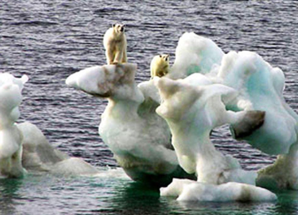 Court Upholds Shell's Arctic Oil Spill Plans Despite Scientific Warnings