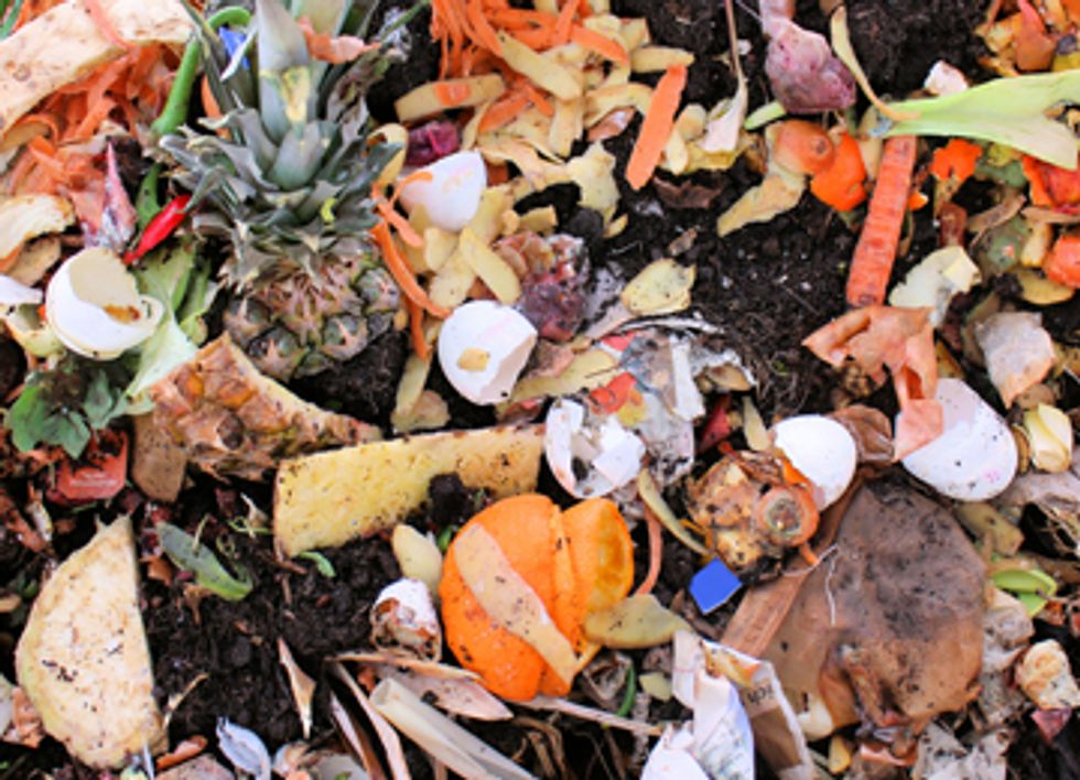 The Global Progress of Composting Food Waste