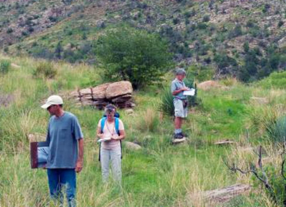 Warming Climate Pushes Plants Up the Mountain