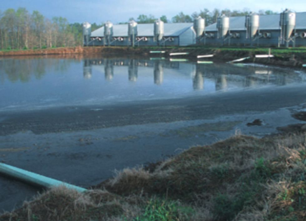 EPA Sued for Abandoning Critical Factory Farm Rule Under Clean Water Act
