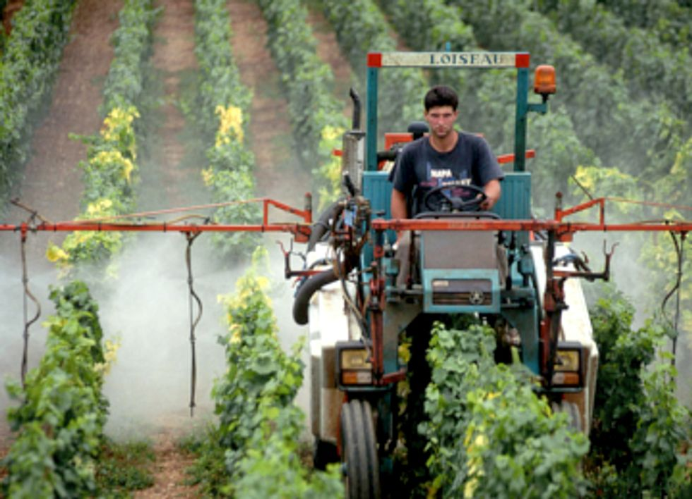 New Generation of Genetically Engineered Crops Found to Drastically Increase Use of Toxic Pesticides