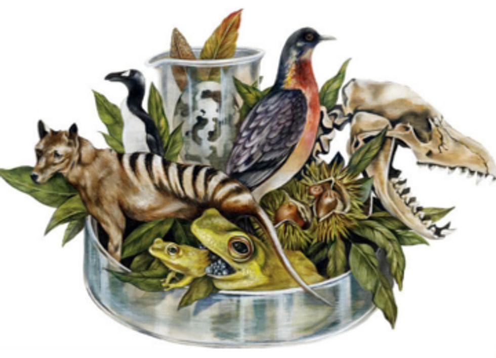 De-Extinction: If We Could Revive a Species, Does It Mean We Should?