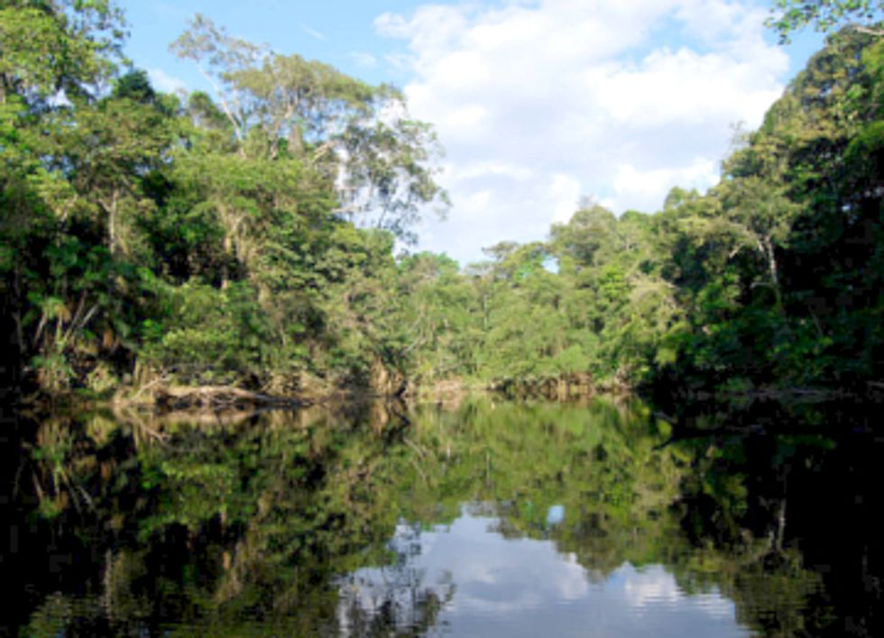 Why Ecuador Abandoned Plans to Leave Fossil Fuels in the Ground and Save the Amazon