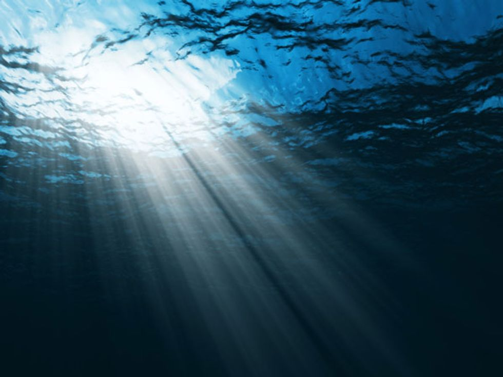 Urgent Warning from Scientists: Health of Oceans Spiraling Downwards