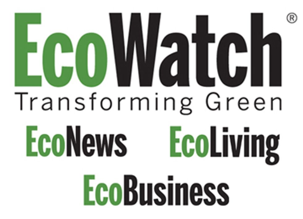 EcoWatch Expands Website to Reach All Shades of Green