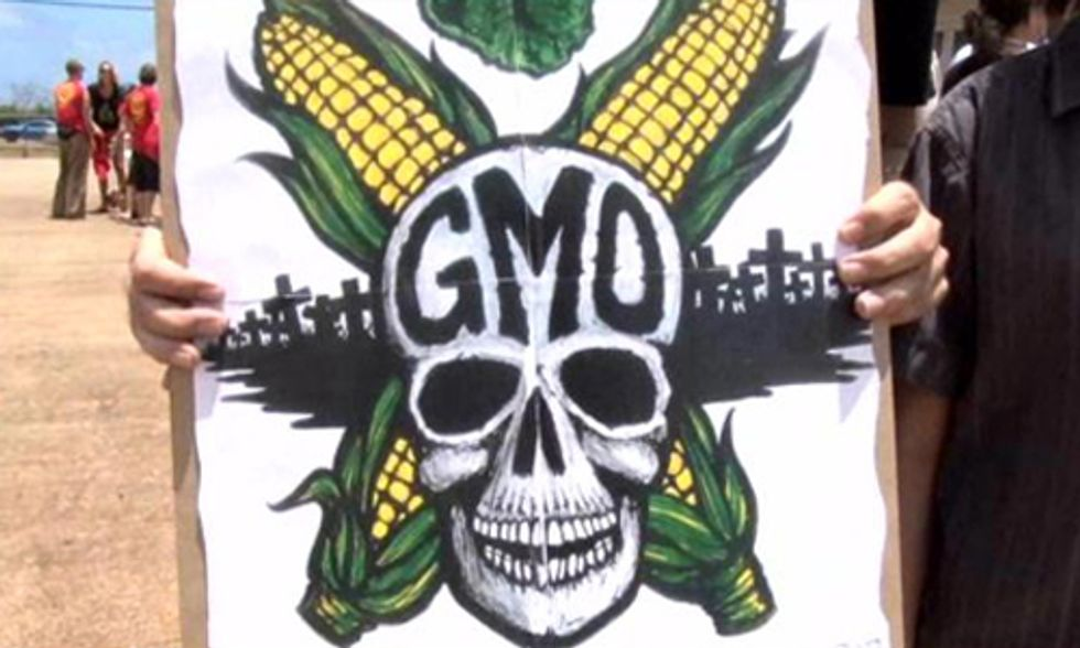 Kauai Council Approves Controversial GMO Bill