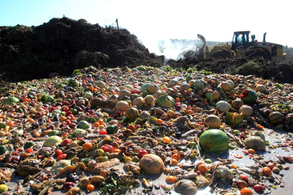 Global Organizations Take Major Step Toward Cutting Food Waste