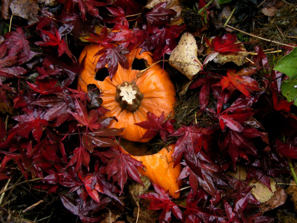 5 Ways to Make Your Halloween Green