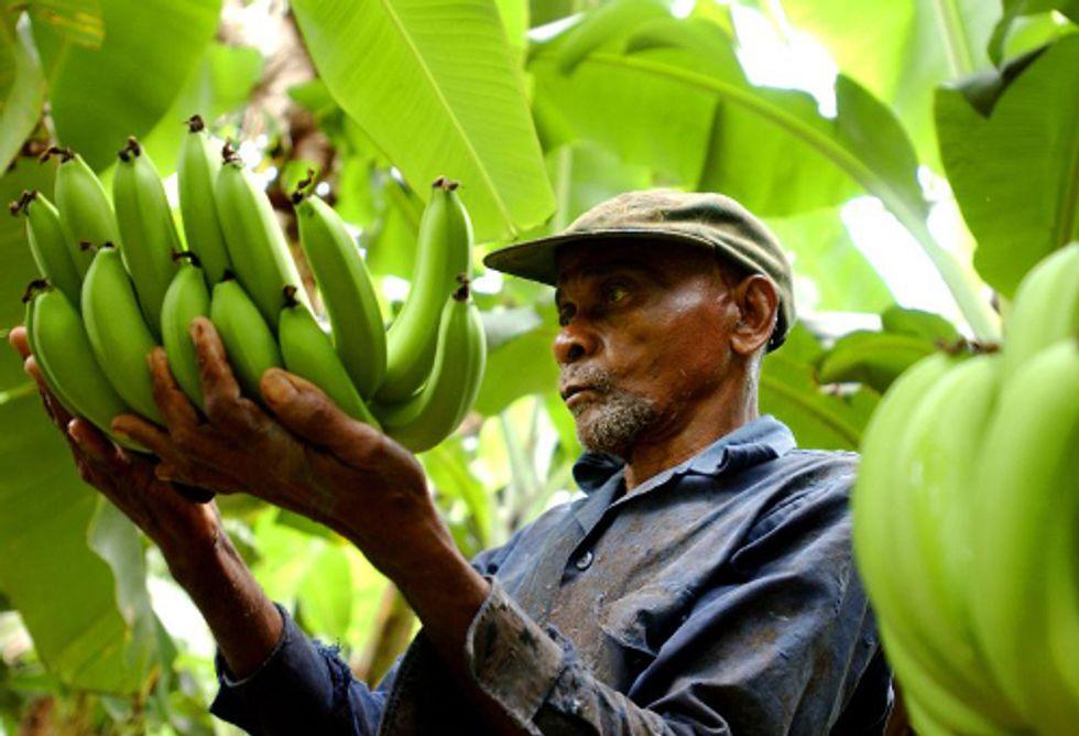 5 Reasons You Should Buy Fair Trade