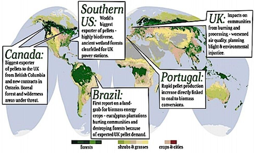 Report Highlights World-Wide Forest Destruction and Land Grabbing Due to UK Biomass Demand