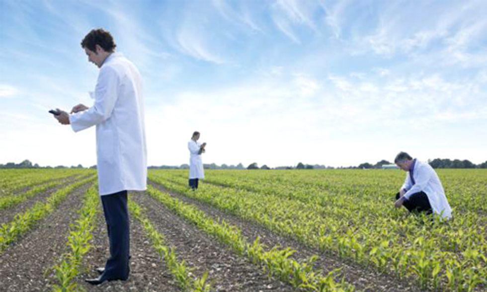 Kauai Mayor Vetoes Bill Mandating Disclosure of Genetically Modified Crops