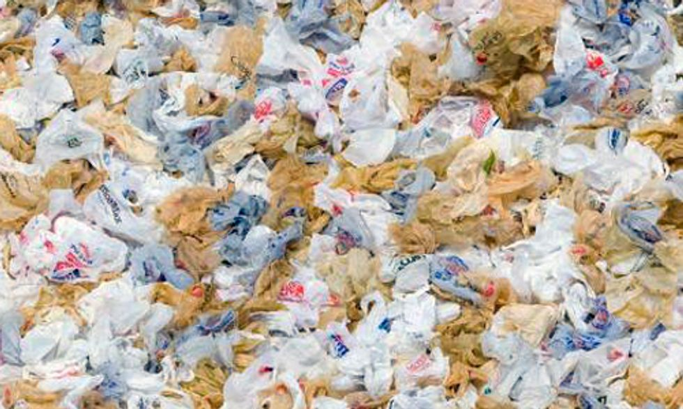 Proof Positive It's Time to Ban Plastic Bags