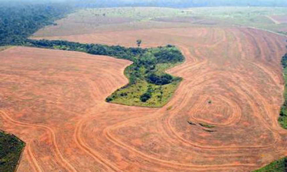 Amazon Deforestation Increases 28 Percent in One Year