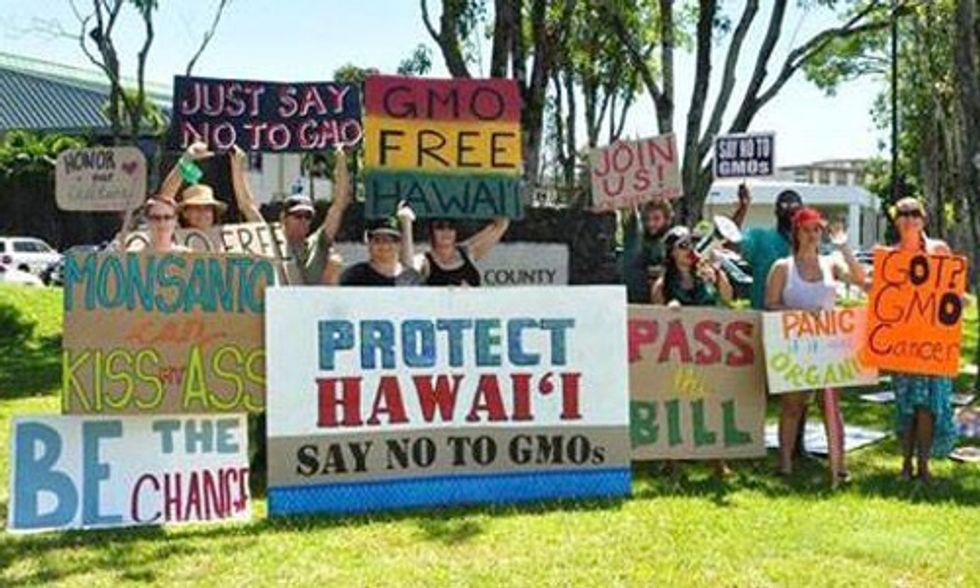 Hawaii's Big Island Bans GMO Crops and Biotech Companies