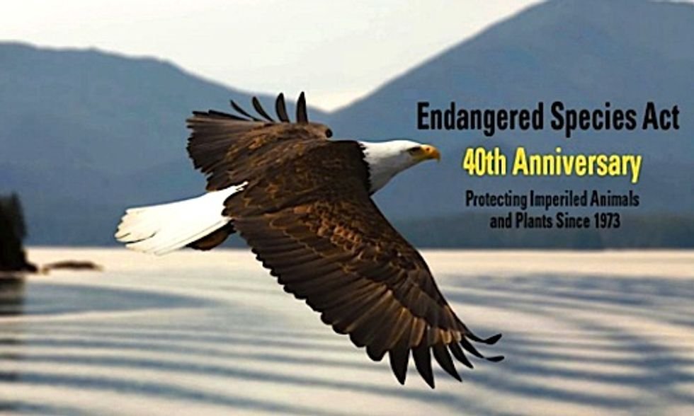 Tea Party Bill Would Gut Endangered Species Act