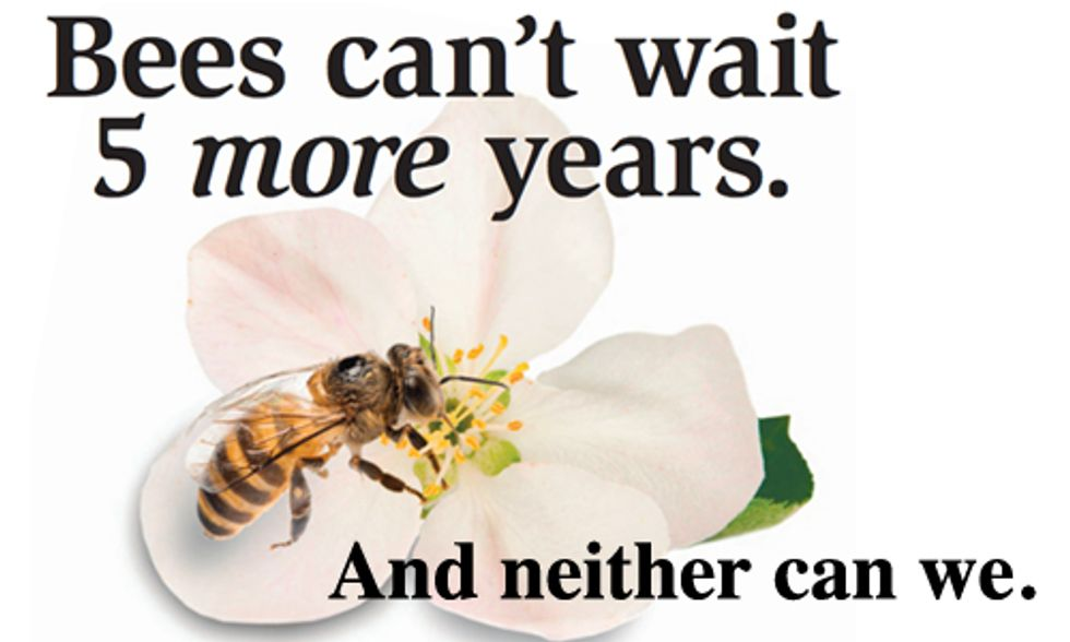 Coalition Builds Buzz on Pollinator Decline With National Ad Campaign