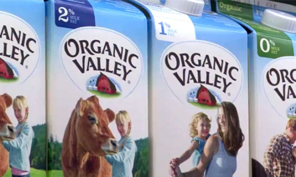 Study Finds Organic Milk More Nutritious Than Conventional Milk